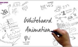 I Will Create Custom Animation Video For Your Business